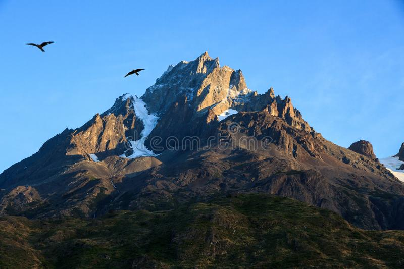 Två Caracaras silhouetted mot den blåa himlen över ett stenigt granitberg, Torres del Paine nationalpark royaltyfria foton
