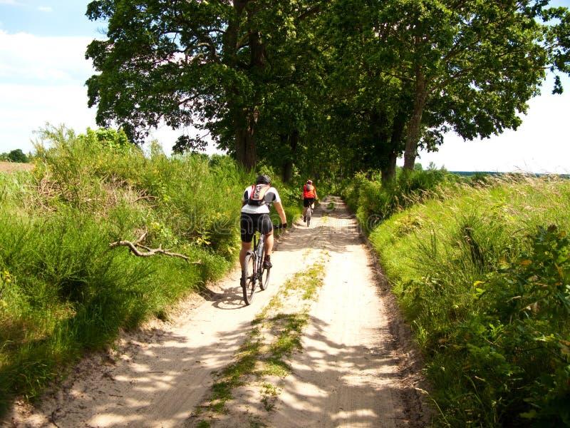 Två cyklister i grön skog royaltyfri foto