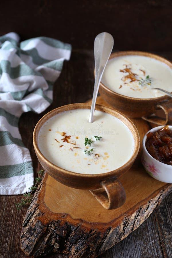 Två delar av löken lagar mat med grädde soppa med caramelized lökar royaltyfri bild