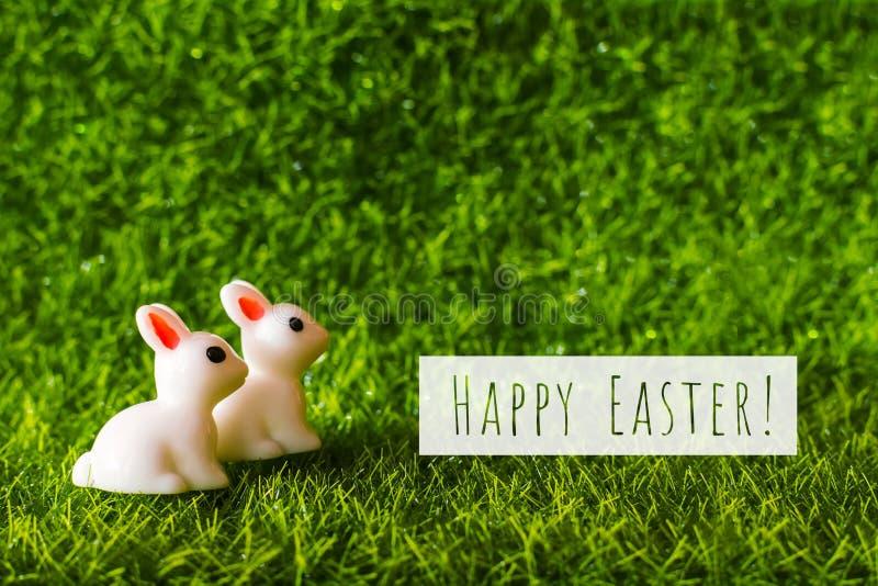 Två diagram kanin på gräset begrepp lyckliga easter royaltyfri foto