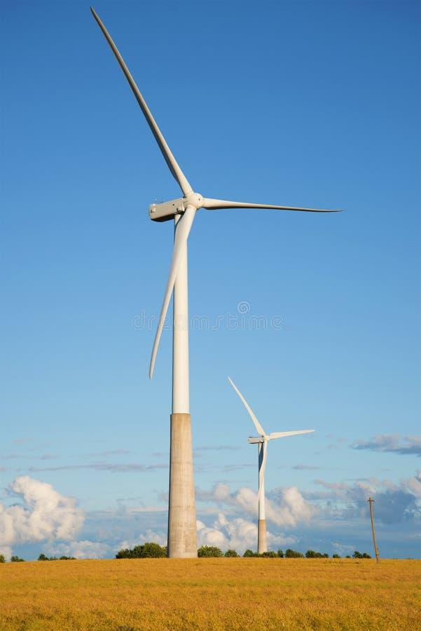 Två elektriska generatorer för vind i fältet i sommaraftonen estonia arkivfoto
