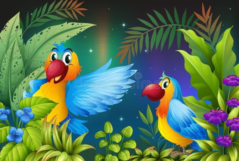 Två fåglar i en mörk skog vektor illustrationer
