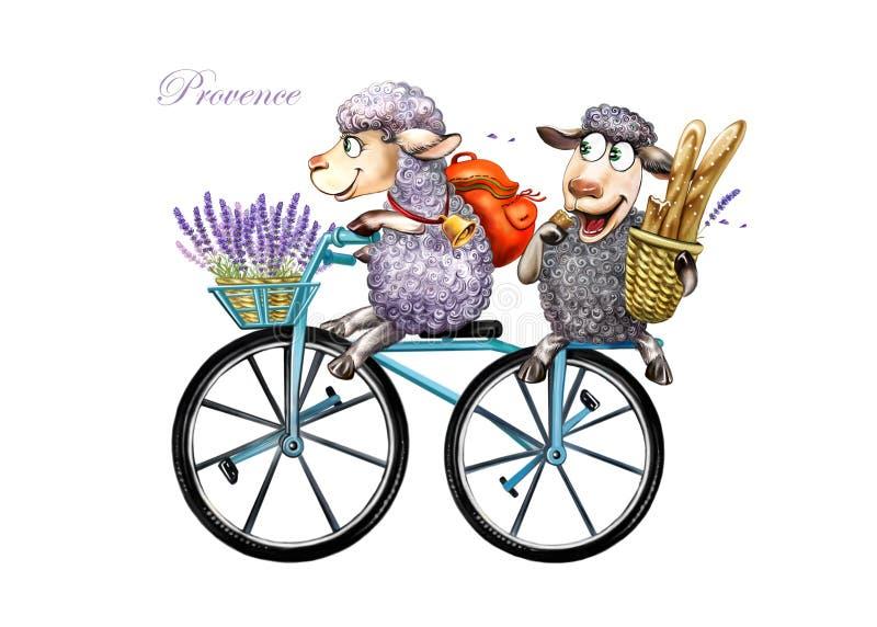 Två får i Provence royaltyfri illustrationer