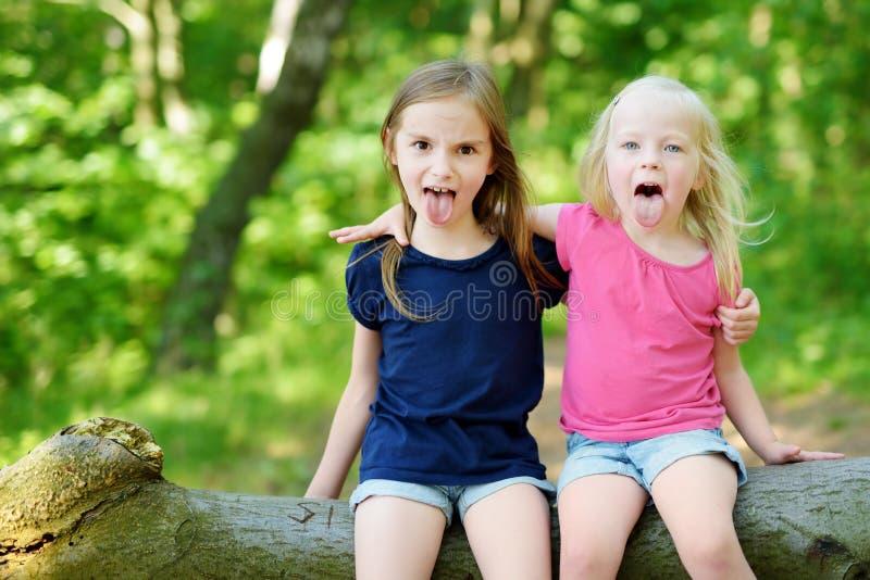 Två förtjusande lilla systrar som fotvandrar i en skog royaltyfri foto