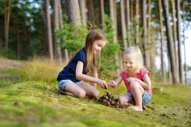 Två förtjusande lilla systrar som fotvandrar i en skog royaltyfri bild