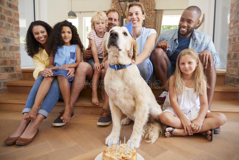 Två familjer som hemma firar älsklings- födelsedag för dogï¿ ½ s arkivbilder