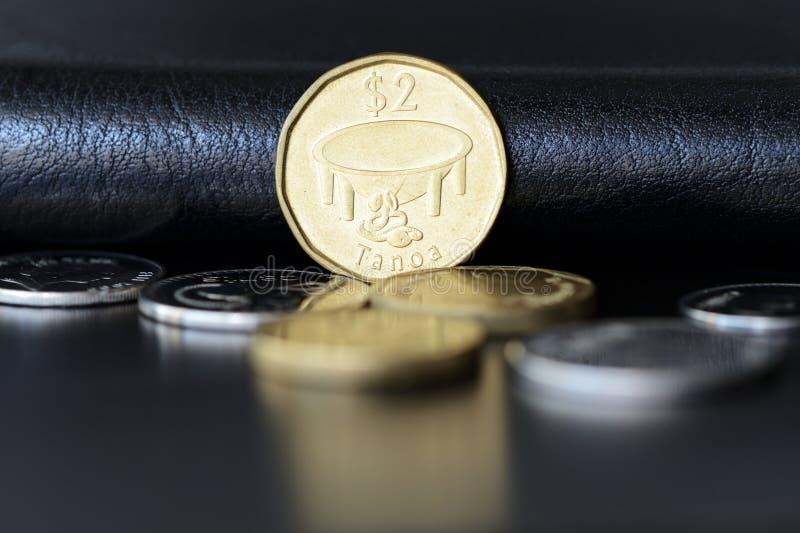 Två fijian dollar på en mörk bakgrund arkivfoto