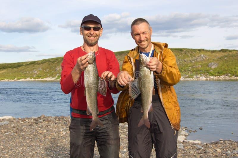 Två fiskare rymmer enorma graylings royaltyfri foto