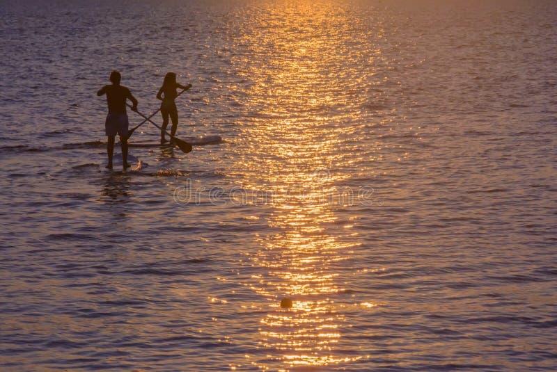 Två flätade samman paddlesurfers. royaltyfri bild
