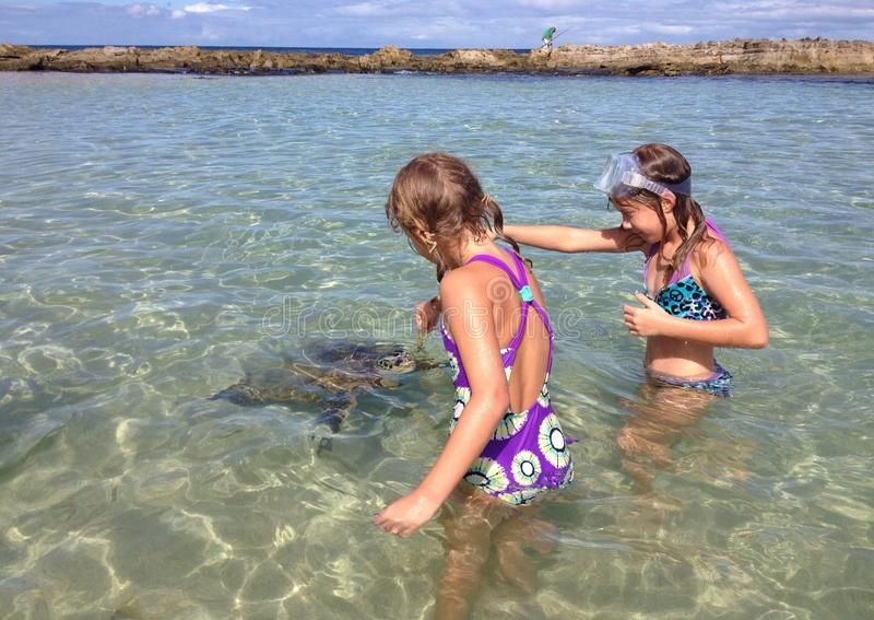 Två flickor matar en havssköldpadda arkivfoton