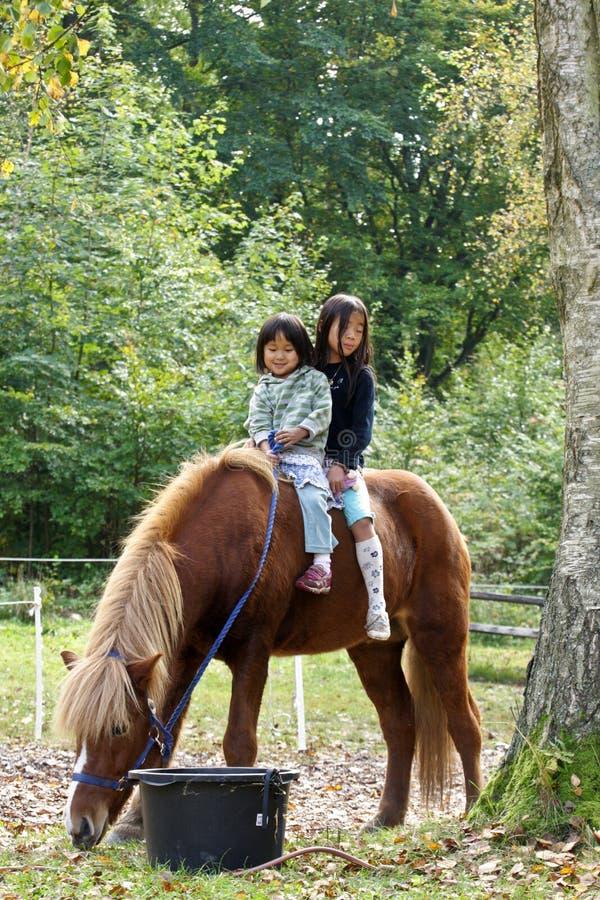 Två flickor med hästen royaltyfri fotografi