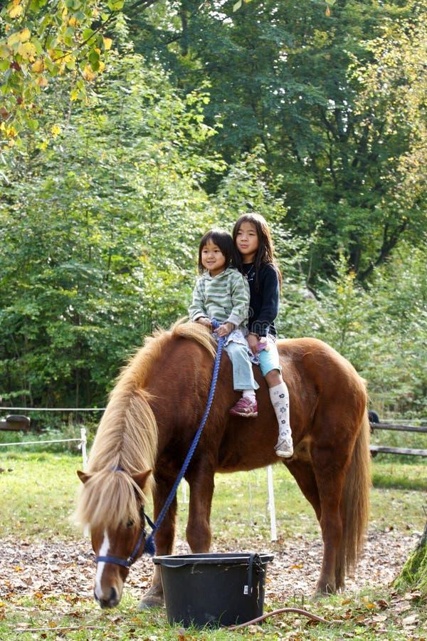 Två flickor med hästen fotografering för bildbyråer