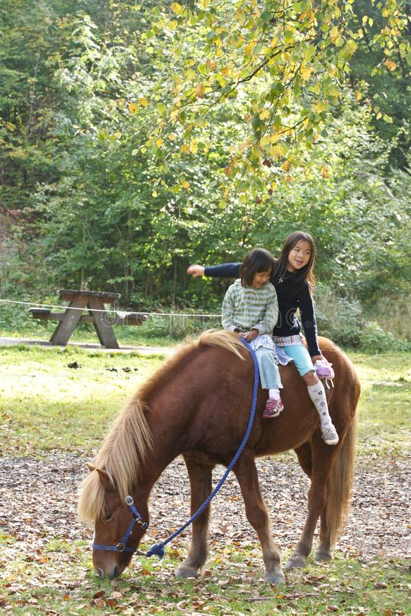 Två flickor med hästen arkivbild