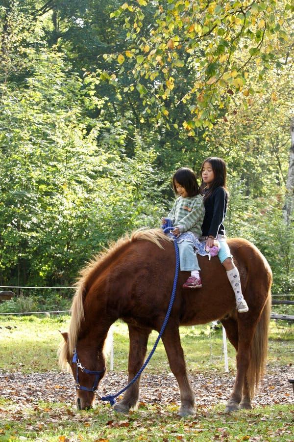 Två flickor med hästen royaltyfria bilder