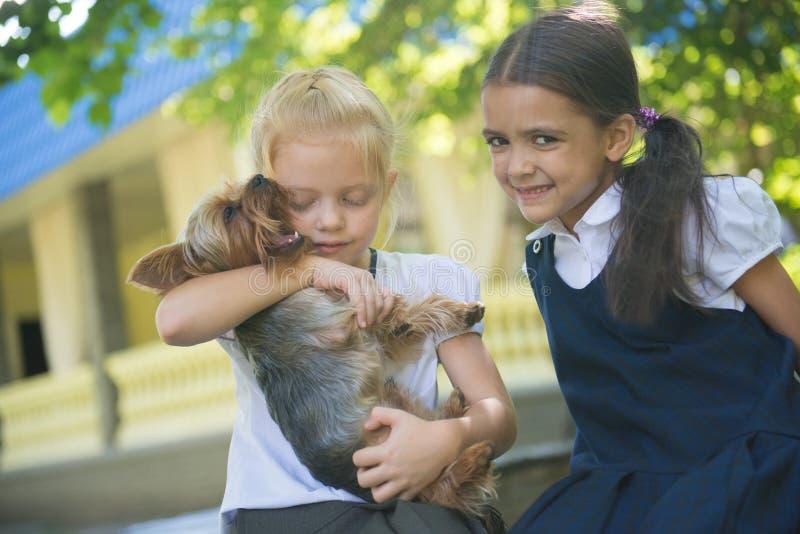 Två flickor som spelar med en hund arkivfoton