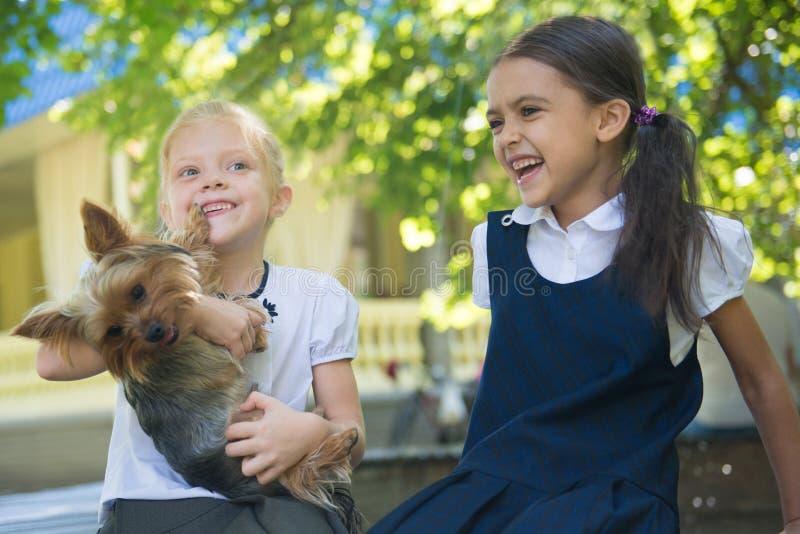 Två flickor som spelar med en hund royaltyfri foto