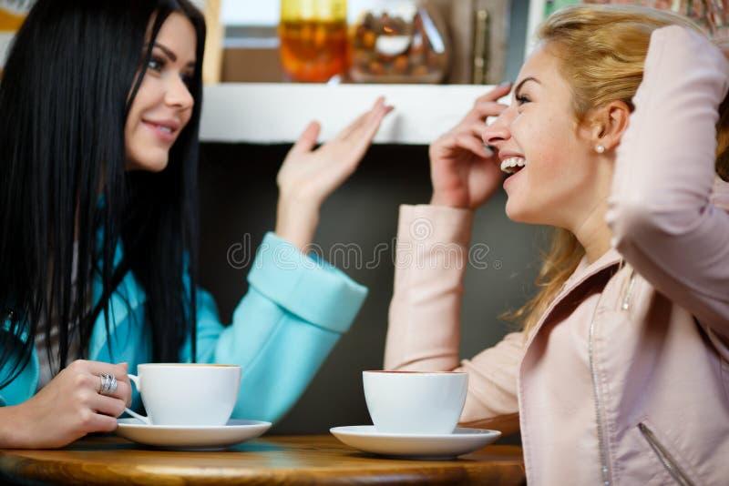 Två flickor som talar i kafé royaltyfria foton
