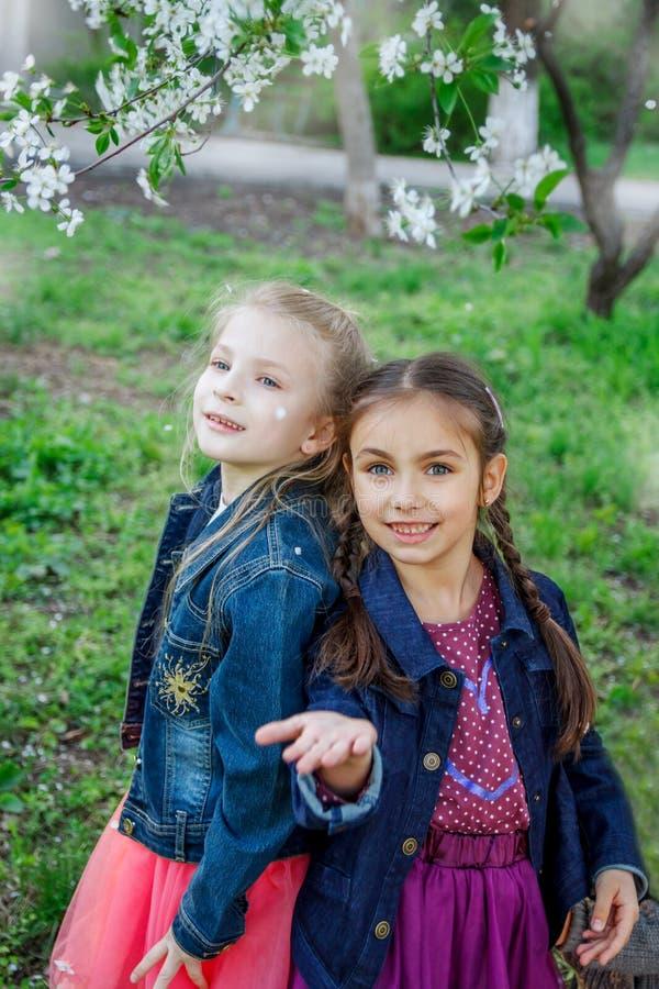 Två flickor som tycker om fallande kronblad i vårträdgård royaltyfri fotografi