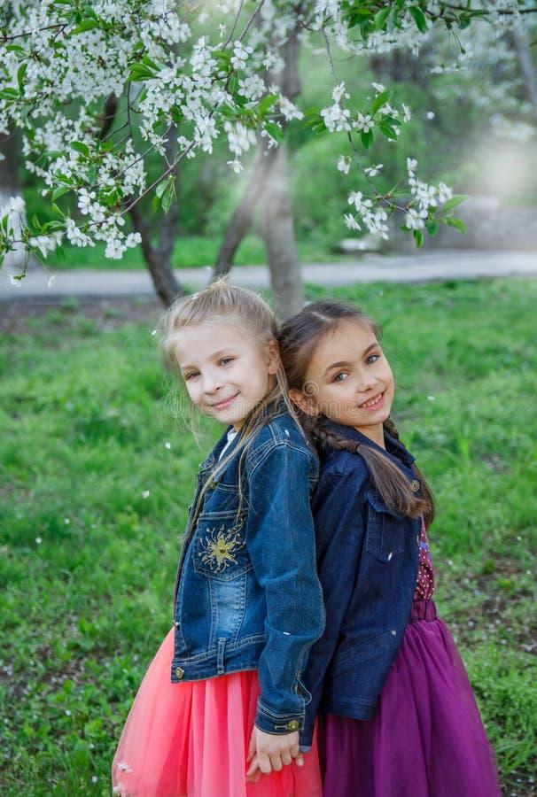 Två flickor som tycker om fallande kronblad i vårträdgård arkivbild