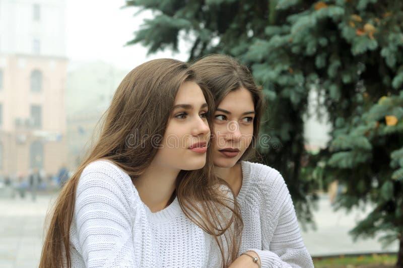 Två flickvänner sitter nära julgranen royaltyfri foto