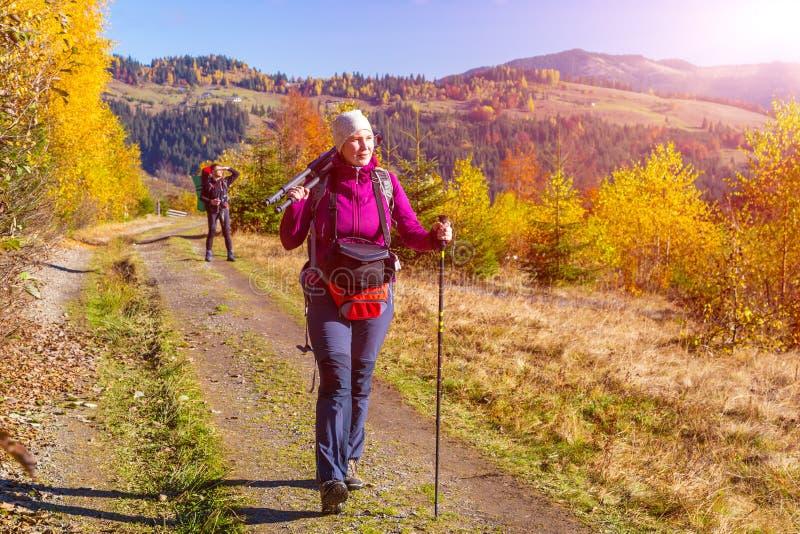 Två fotvandrare som går på bana i höstlig skog royaltyfri fotografi