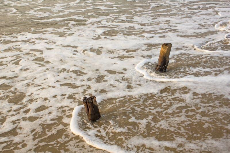 Två gamla träpelare sticker fram från det skummande vattnet av havsbränningen arkivbild