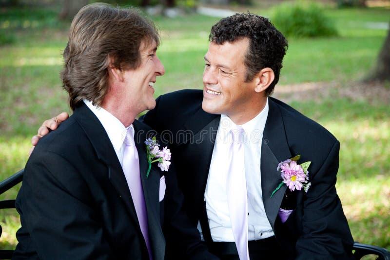 Två glade brudgummar på bröllopdag royaltyfri bild