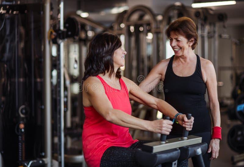 Två gladlynta pensionärkvinnor i idrottshallen som gör styrkagenomkörareövning arkivfoto