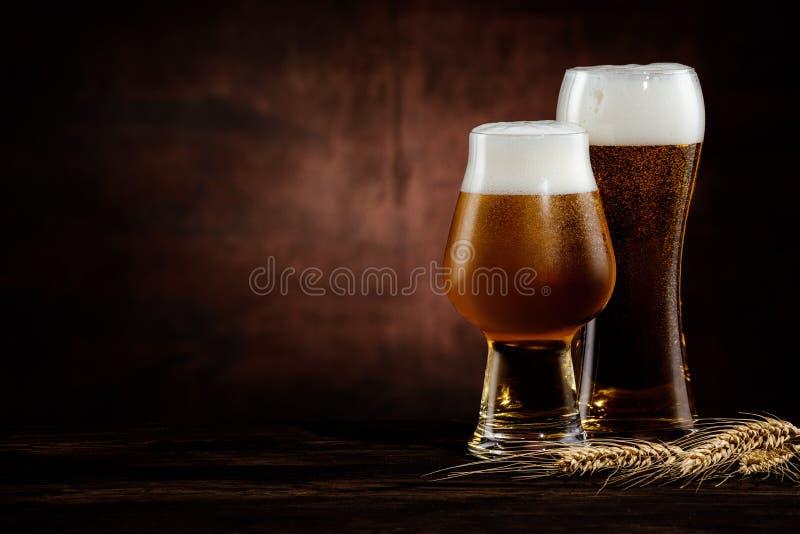 Två glas kallt guldöl och vetespannor royaltyfri fotografi