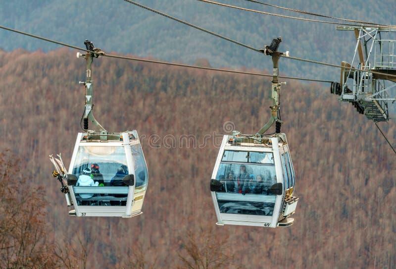 Två gondolkabiner av skidlift för Gorky Gorod kabelväg i Sochi som är full av skidåkare på kal skogbergbakgrund arkivfoton