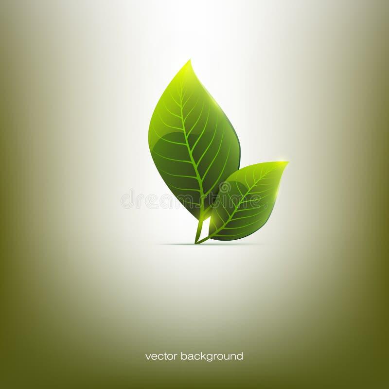 två gröna sidor, vektor fotografering för bildbyråer