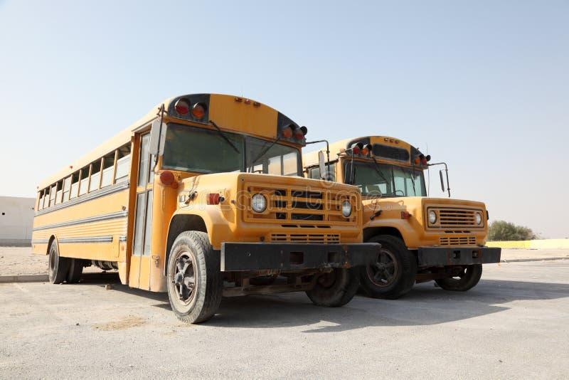 Två gula skolbussar fotografering för bildbyråer