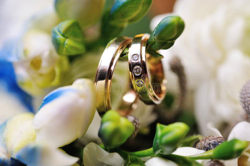 Två guldbröllopcirklar fotografering för bildbyråer