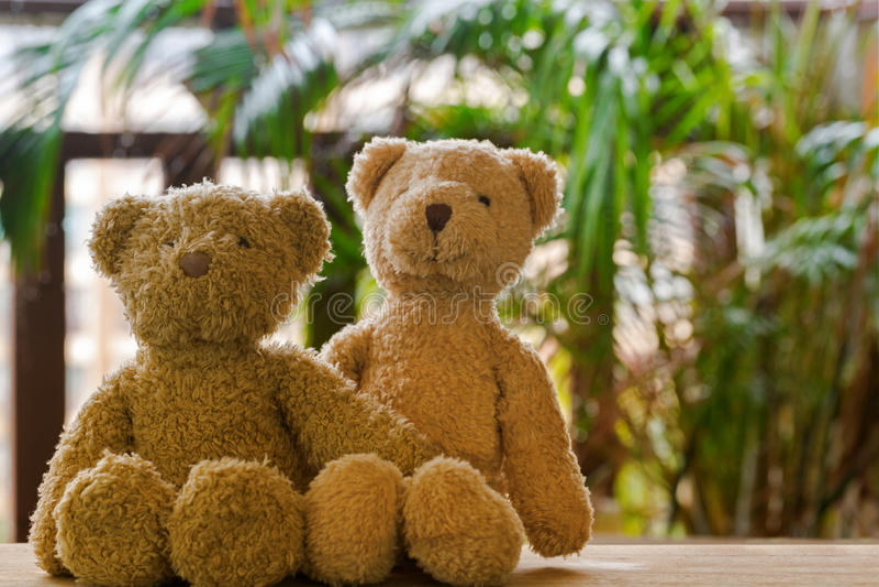 Två gulliga brunbjörnar som sitter på trä med den suddiga trädgårds- balkongen arkivbilder