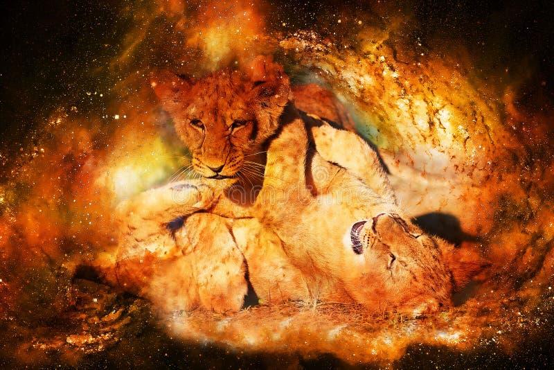 Två gulliga lejongröngölingar som tillsammans spelar i kosmiskt utrymme stock illustrationer