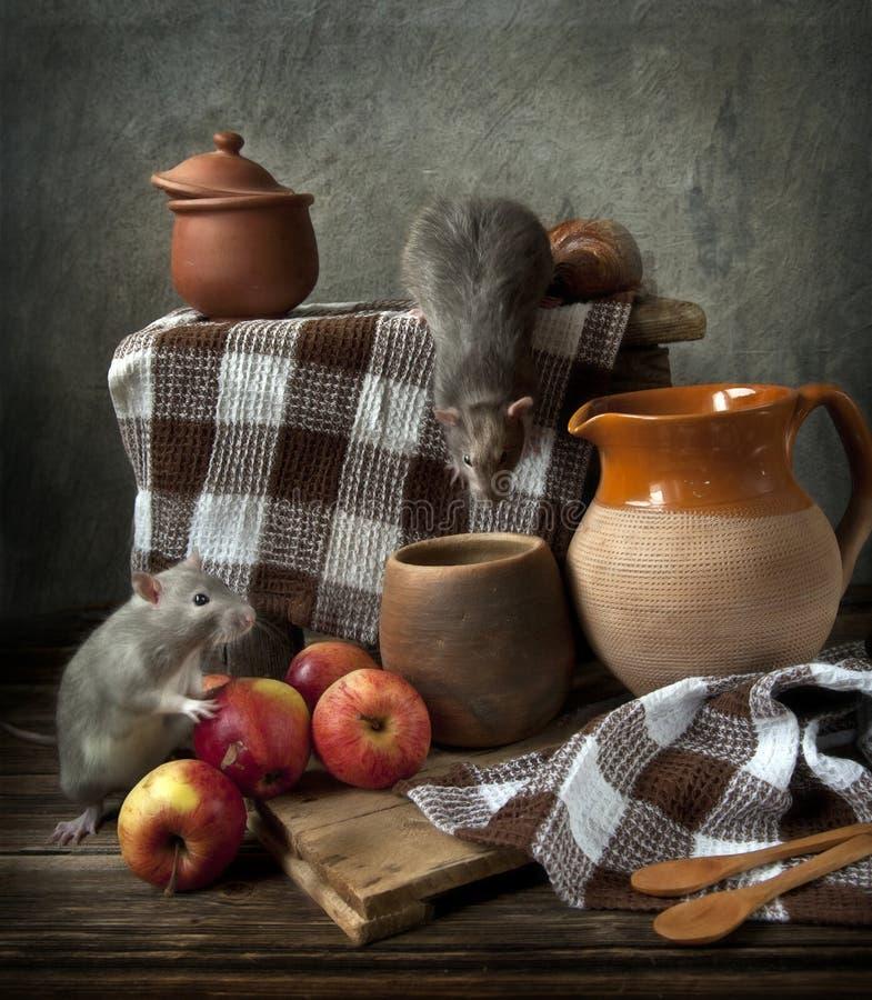Två gulliga lilla grå färg tjaller lekar in i stillebensammansättning i tappningstil med äpplen, och keramiskt rånar Kinesiskt sy arkivbild