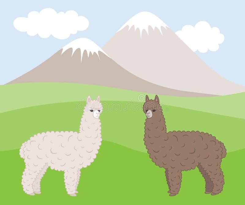 Två gulliga päls- olikt kulöra alpacas på en bergäng stock illustrationer