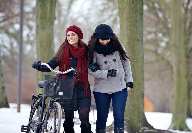 Två härliga kvinnor på en kylig dag på parkera royaltyfria bilder