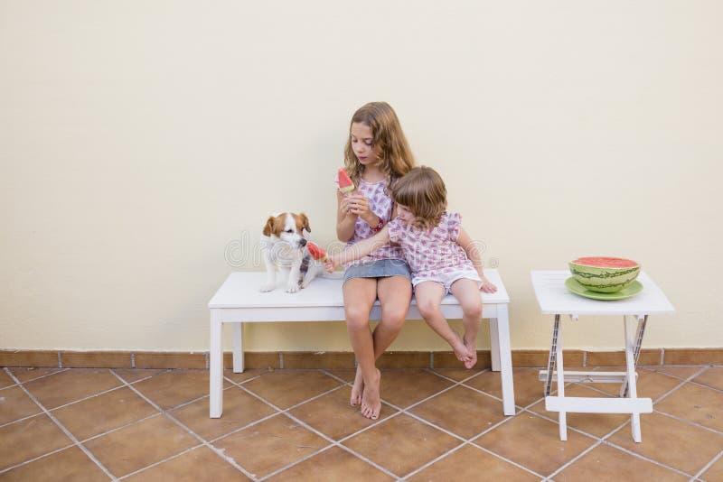 Två härliga systerungar som äter en vattenmelonglass med deras gulliga hund Familjförälskelse- och livsstildet fria arkivfoto