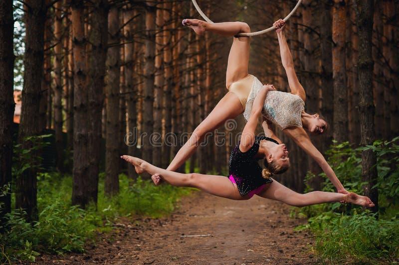 Två härliga tonåriga gymnaster som gör övningar på luftcirkeln i träna royaltyfria foton