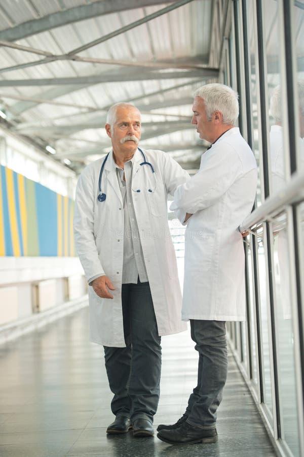 Två höga doktorer som talar i sjukhushall arkivbild