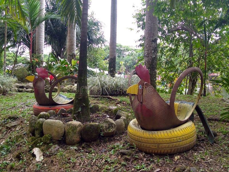 Två hönor som göras med ett gummihjul i parkera royaltyfri foto