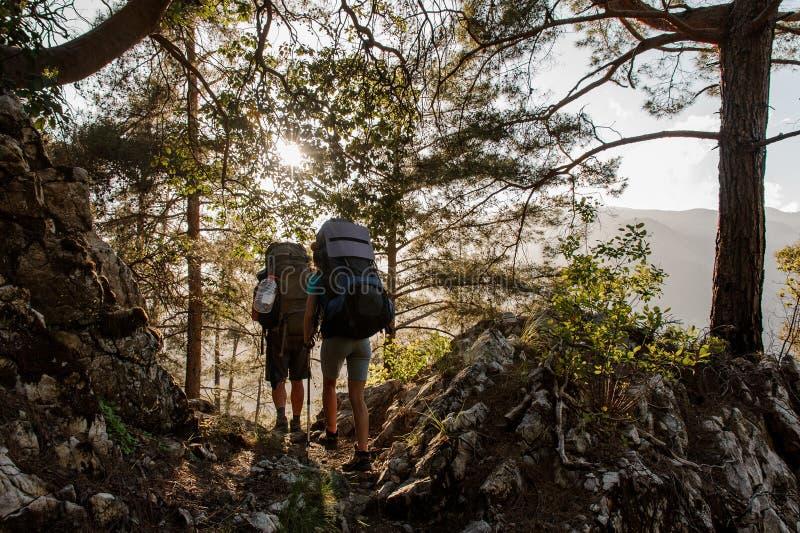 Två handelsresande med ryggsäckar som irrar i skog royaltyfri foto