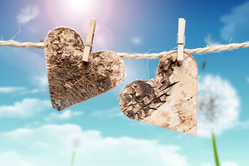 Två hjärtor på en linje framme av en vårbakgrund royaltyfri fotografi