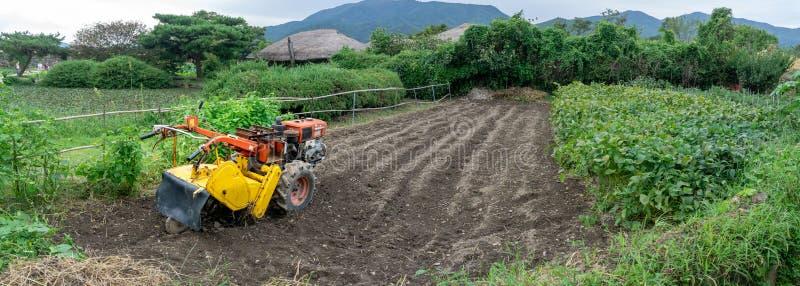 Två-hjul traktor eller gåtraktor på grönsakrisfältfältet i den Naganeupseong folkbyn royaltyfria foton
