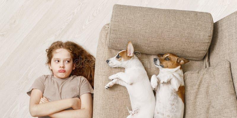 Två hundkapplöpning sover på den beigea soffan och olyckliga flickan som ligger på trägolvet fotografering för bildbyråer