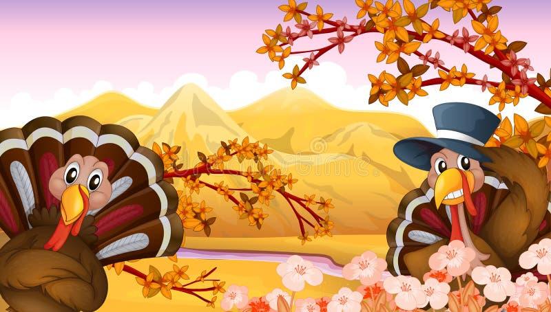 Två kalkon i en höstsikt stock illustrationer