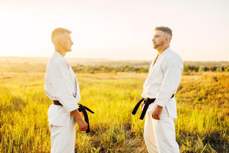 Två karatekämpar på utomhus- utbildningskamp royaltyfri bild