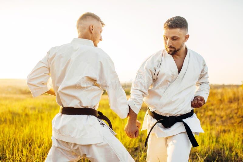 Två karatekämpar på utomhus- utbildningskamp arkivfoton