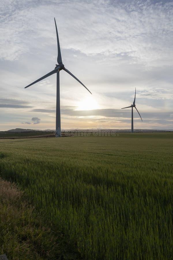 Två konturer för vindturbin i ett fält på solnedgången royaltyfri bild